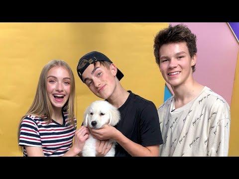 Hayden Summerall, Johnny Orlando, and Lauren Orlando Dress Up Puppies for Halloween | Radio Disney