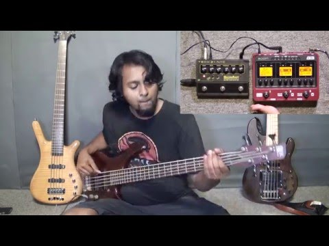Sansamp Bass Driver Programmable & Zoom B3 Multi-effects Bass Pedal Demo by Naresh Nathan (Slain)