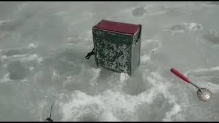 Рыбалка зимняя Моск обл Водники 03 04 2021г