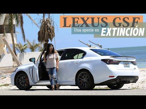 Lexus GS F:  Especie en Extinción