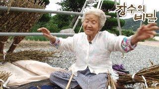 장수의 비밀 - 연이 할머니의 둥글둥글 내 인생