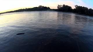 Ловля на дону. Рыбалка 2019