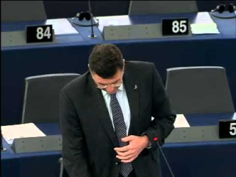 MEP Jörg Leichtfried spricht im Plenum zur finalen Gigaliner-Bericht Abstimmung Teil 1