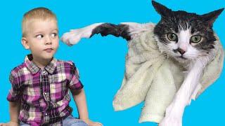 Мика на карантине. Купаем кота Томика первый раз.