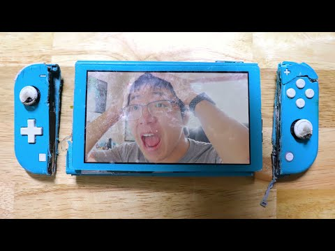 WHY THE SWITCH LITE IS DUMB
