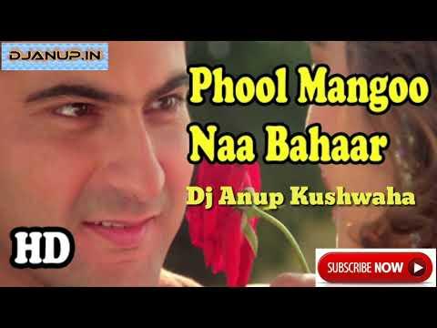 Phool Mangoo Na Bahaar (Sajan) Udit Narayan, Alka Yagnik (Piano Style Electro Mix) Dj Anup Kushwaha
