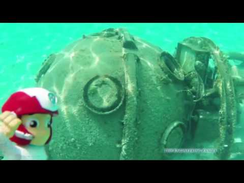 PAW PATROL Nickelodeon Paw Patrol in the Ocean with Fish and Treasures Toys Video