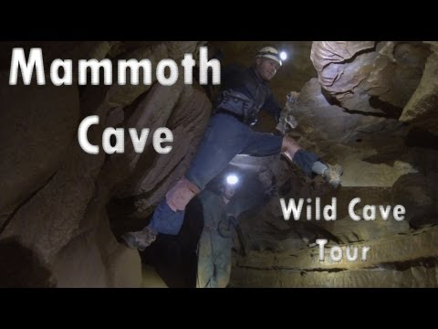 Mammoth Cave: Wild Cave Tour