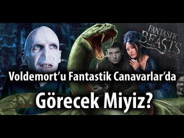 Voldemort'u Fantastik Canavarlarda Görecek Miyiz?  I Bonus: Kamera arkası