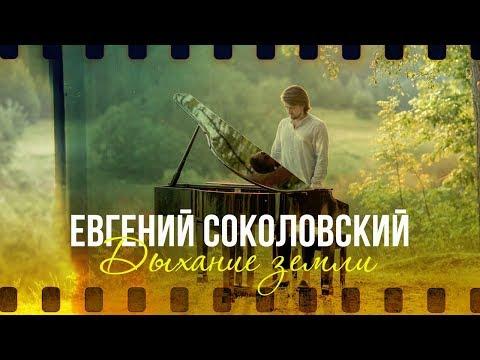 Пианист,