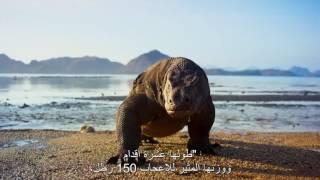 وثائقي  كوكب الأرض الجزء الثاني الحلقة الأولى الجزر