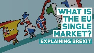 European Single Market - Explaining Brexit