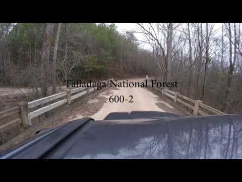 Talladega National Forest 600-2
