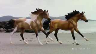 Realistic Breyer horse pics
