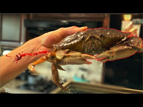 CRAB BATTLE! Giant Dungeness Crab VS Giant Crayfish