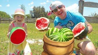 Nastya dan ayah bermain di pertanian dan memberi makan para hewan