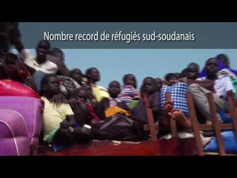 REVUE DE LA SEMAINE À L'ONU. SEMAINE DU 25 AU 29 JUILLET 2016