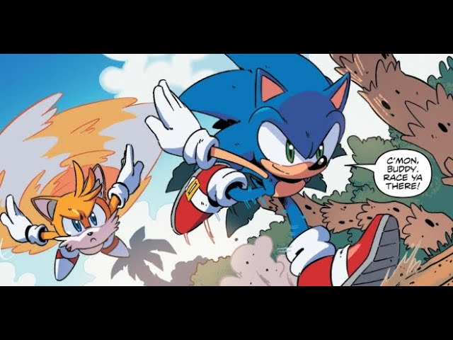 Idw Sonic The Hedgehog Comic Issue 13 Youtube