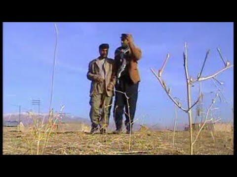 Laqırdıyen Kurdi Cemil Hosta 2006 - Kürtçe Komedi Film 1.Bölüm - (Official Video)