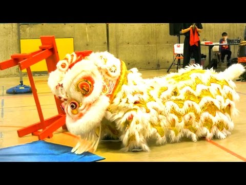2016 Lion Dance Event (First Performance) - Boston Chinatown Main Street USA Competition