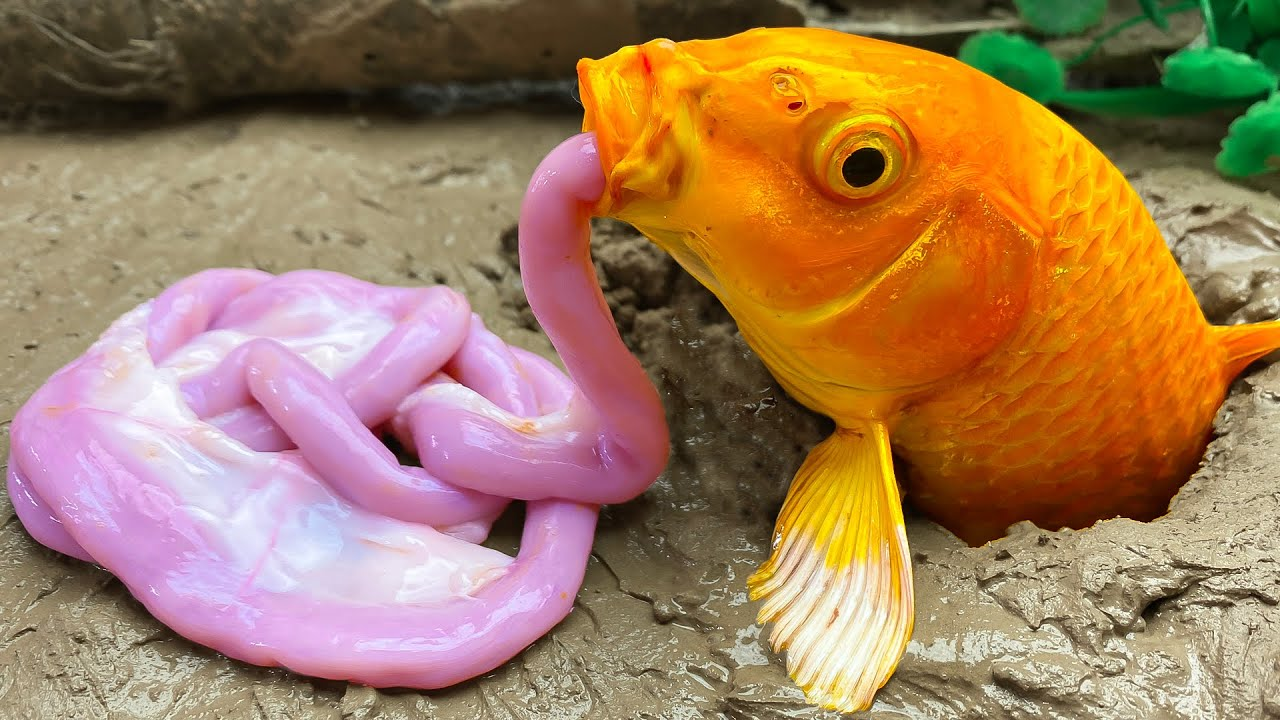 Stop Motion ASMR Relaxing - Catching Seafood (Goldfish Catch Monster Eels) Primitive Cooking Cuckoo