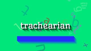 """How to say """"trachearian""""! (High Quality Voices)"""