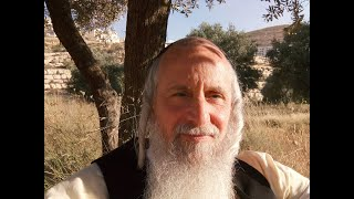 Find Lasting Happiness. You Are What You Desire to Be by Rabbi Dr.Zev Ballen