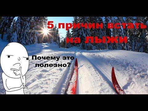 5 причин встать на лыжи   Почему это полезно?