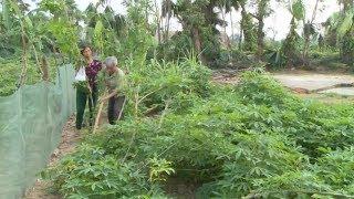 Tin Tức 24h Mới Nhất : Người dân vùng thiên tai ở Hà Tĩnh trước nguy cơ tái nghèo