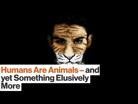 Humans Are Animals — Yet Crucially We Are Something More | T.C. Boyle