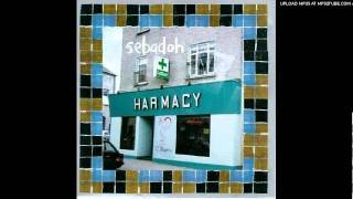 Watch Sebadoh Open Ended video
