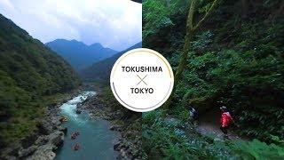 Nature - TOKUSHIMA