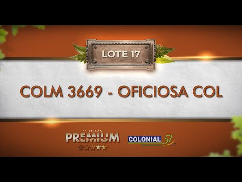 LOTE 17   COLM 3669