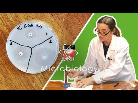 Microbiology - GCSE Science Required Practical (Triple)