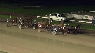 Vidéo de la course PMU MIDWINTERCRITERIUM