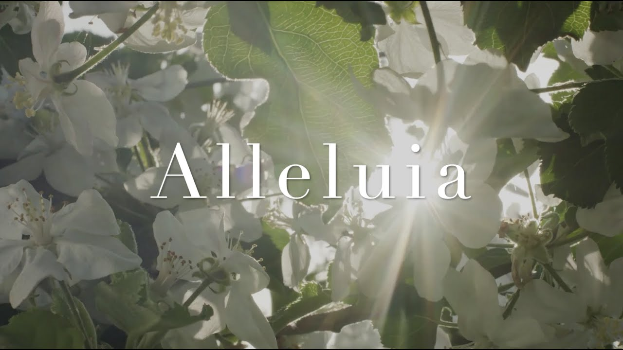 """Alleluia"" by Elaine Hagenberg"