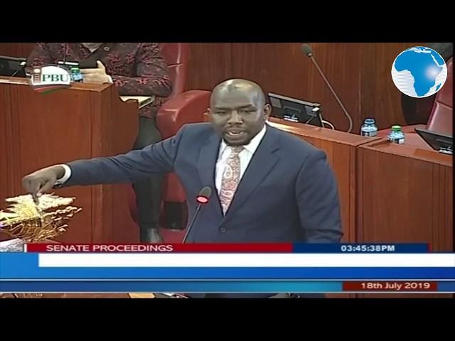Murkomen lauds Orengo for representing senators in court against National Assembly