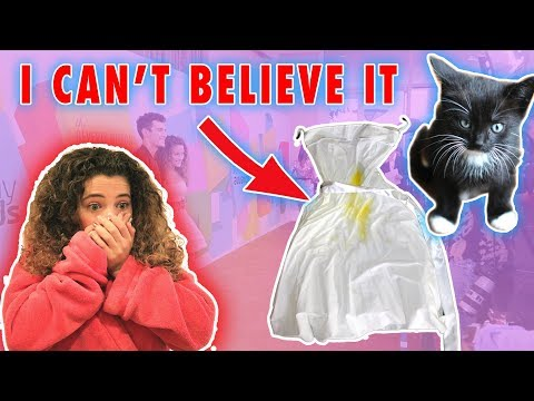 MY KITTEN RUINED MY DRESS!!