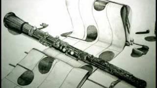 Tomaso Albinoni - Concerto Op. 9/2 in d minor (2/3) [Adagio]