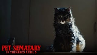 Pet Sematary (2019)- Dead Digital - Paramount Pictures