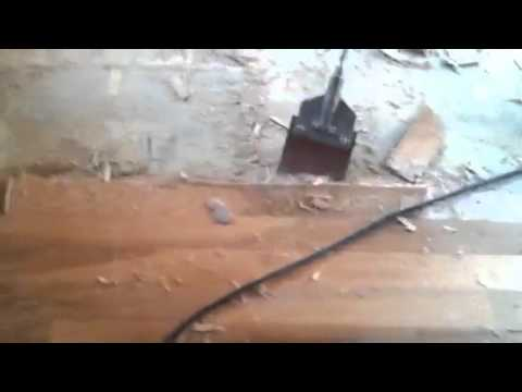 Removing Glued Hardwood Floor From Concrete Youtube