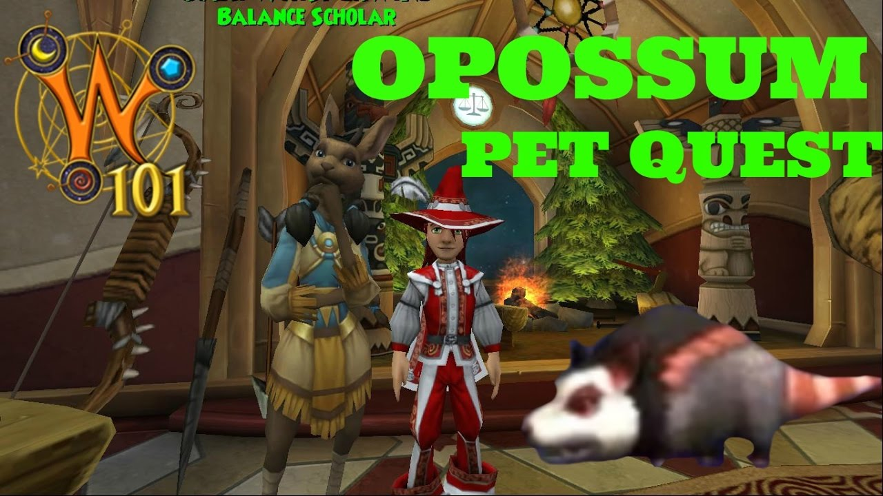 Summary -> Petopossum Wizard101 Wiki
