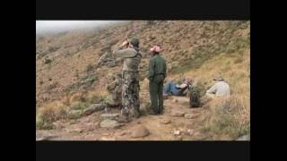 Baboon Hunting in South Africa - Baboon falls off of mountain like King Kong after a 573 yard shot.