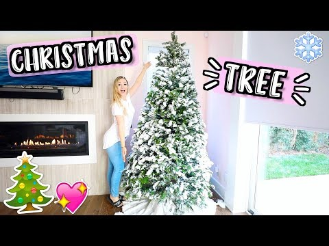 Download Youtube: Getting Our First Real Christmas Tree!! Vlogmas Day 8!!