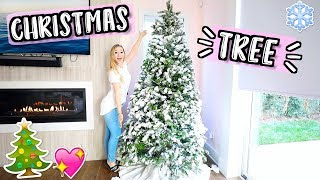 Getting Our First Real Christmas Tree!! Vlogmas Day 8!!