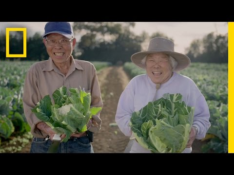 This New Zealand Couple Is Charming—So Is Their Farming | Short Film Showcase