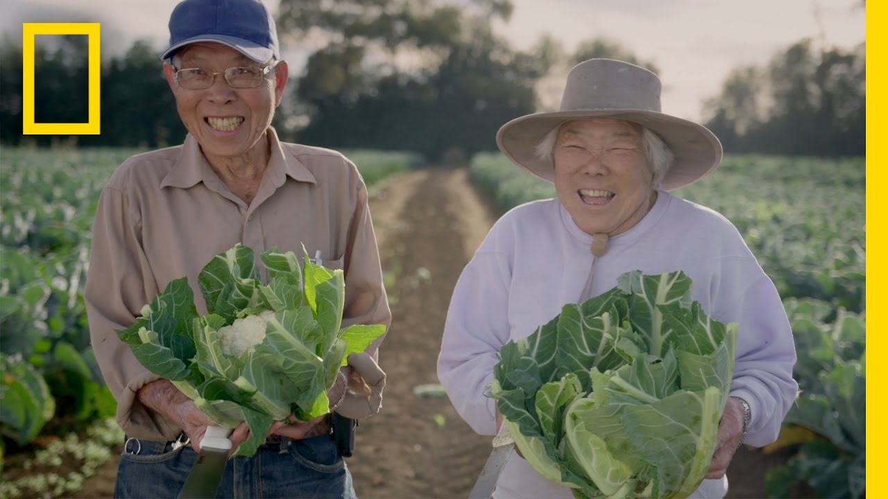 This New Zealand Couple Is CharmingSo Is Their Farming  Short Film Showcase