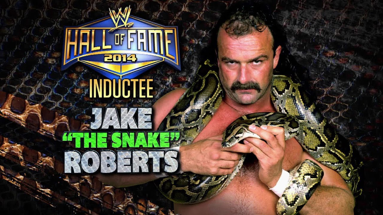 "2014 WWE Hall of Fame Inductee: Jake ""The Snake"" Roberts ...