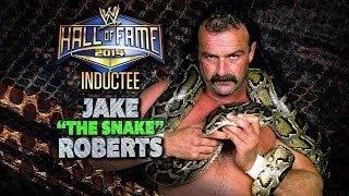 2014 WWE Hall of Fame Inductee…