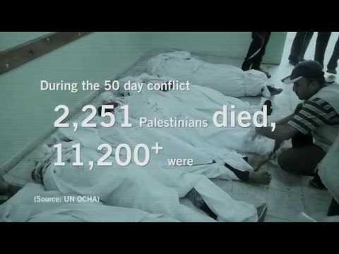 Gaza Platform Findings